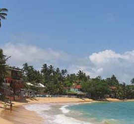 Путешествие «РАДОСТЬ ЖИЗНИ».. Остров  Шри-Ланка