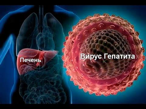 Как лечатся от гепатита-C в США.