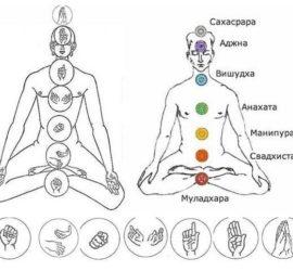 Мудры, раскрывающие (активизирующие) чакры