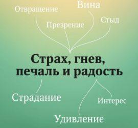 Четыре базовые эмоции – радость, гнев, страх и печаль.
