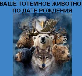 Славянский зодиак