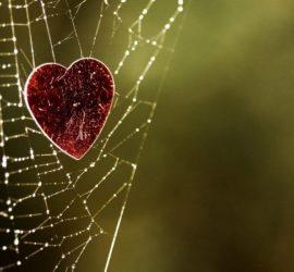 Муки любви или психология любви.