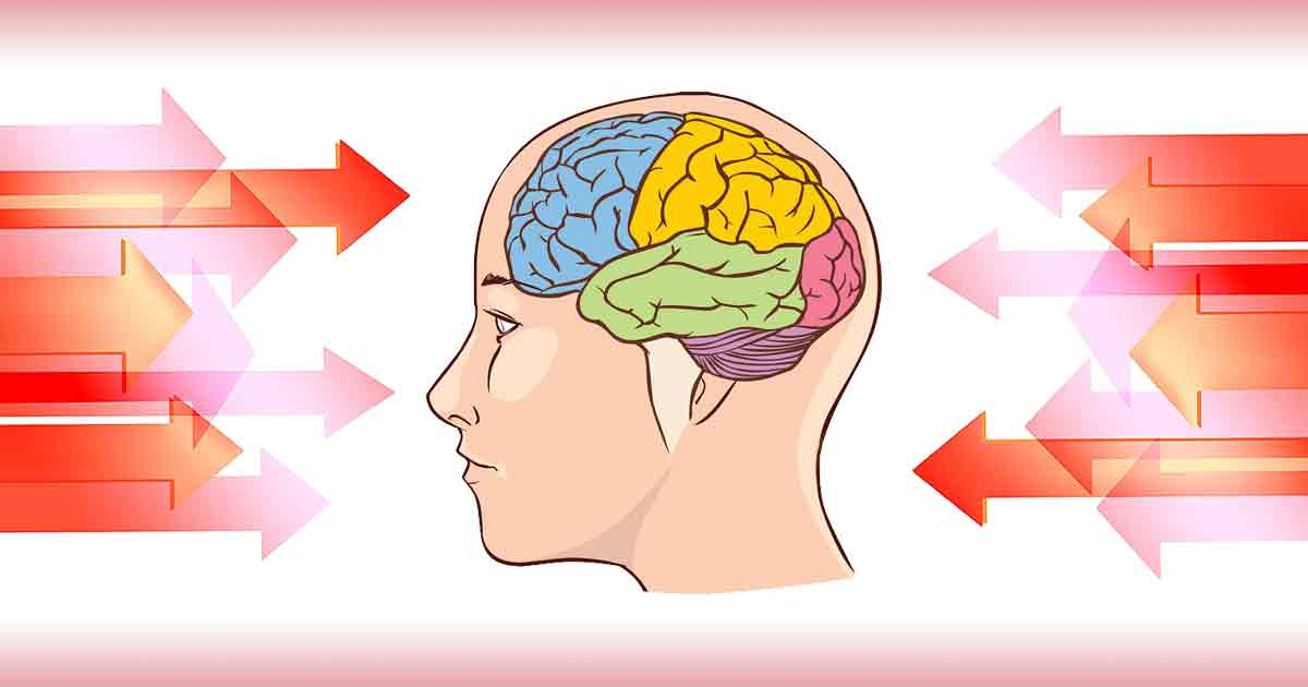 Привычки, которые вредят нашему мозгу.